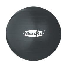 musckit_fitness-ball-wpump_1